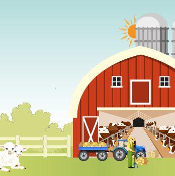 Kırmızı Et Üreten Tarımsal İşletmeler