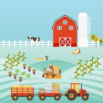 Bitkisel üretimin çeşitlendirilmesi ve bitkisel ürünlerin işlenmesi ve pazarlanması